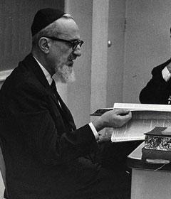 Rav Yosef Dov Soloveitchik
